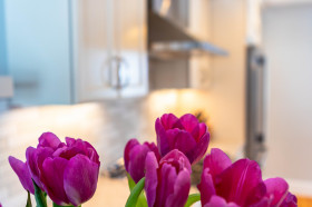 Kitchen-Tulips